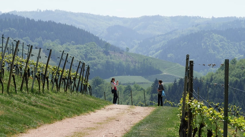európa : DURBACH, GERMANY - CIRCA 2019: Two young women discovering the vineyard and hills of the majestic Durbach village in Baden Wurttemberg - green sunny weather over spring fields Stock mozgókép