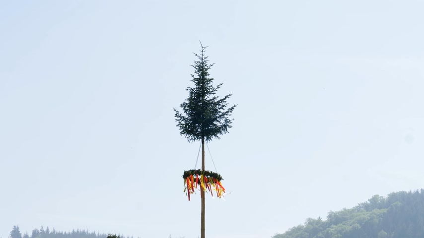 lehet : Maypole decorated for festival event with multicolored yellow and red ribbons in the colors of Baden-Wurttemberg state with Black Forest hills in the background