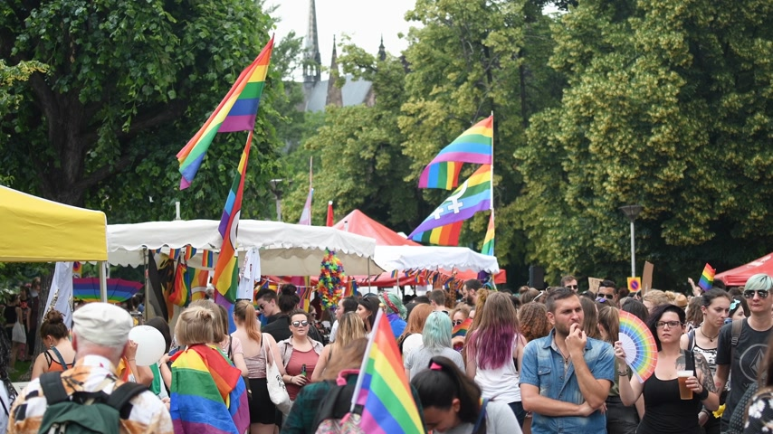 separè : STRASBOURG, FRANCE - CIRCA 2018: Large crowd of people in central square at annual FestiGays pride gays and lesbians parade before marching on French streets party atmosphere