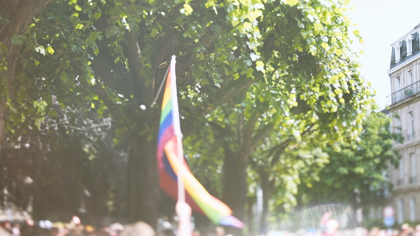 praca zespołowa : Romantic cinematic flare over waving gay rainbow flag over thousands of people crowd tilt-shift lens used annual FestiGays pride gays and lesbians parade marching French streets dancing fun party atmosphere