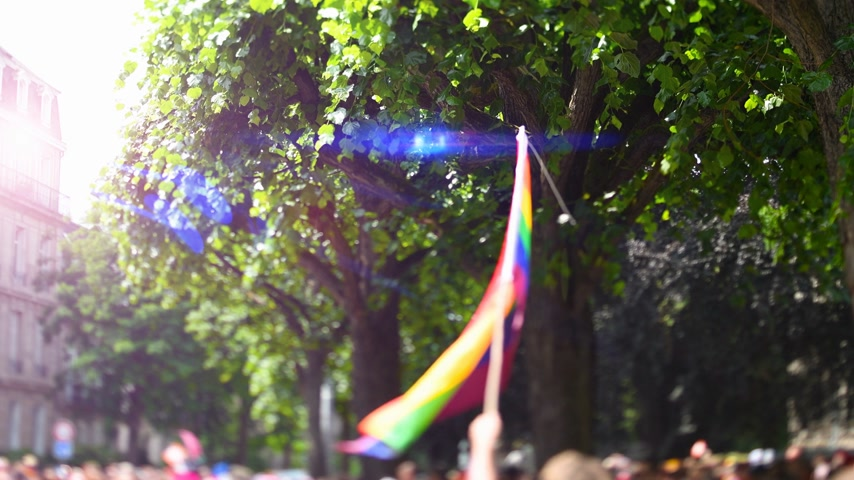 seksualiteit : Sunlight blue flare over man waving rainbow flag at annual FestiGays pride gays and lesbians parade marching French streets dancing fun party atmosphere