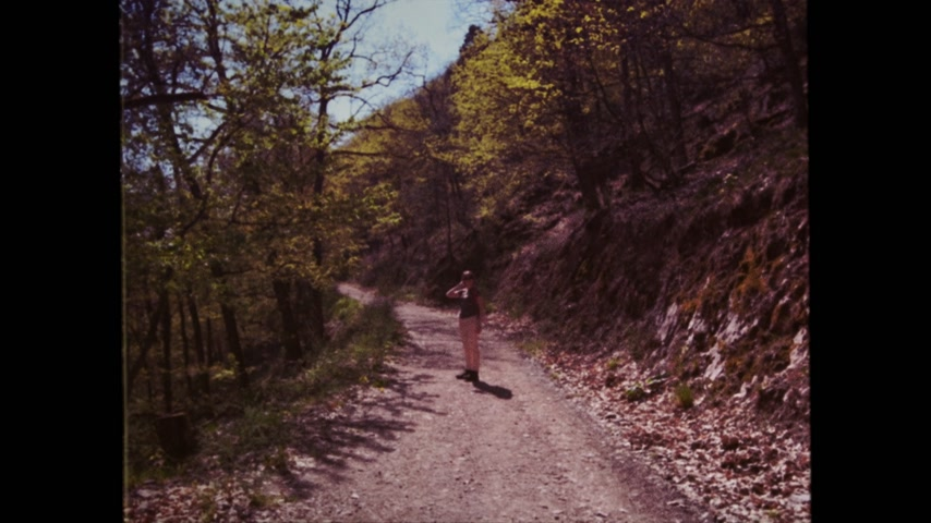 vosges : 18mm film effect rear view of single young woman with red backpack walking sightseeing discovering the Vosges forest on a spring day with clear blue sky and tall pines vertical image Stock Footage