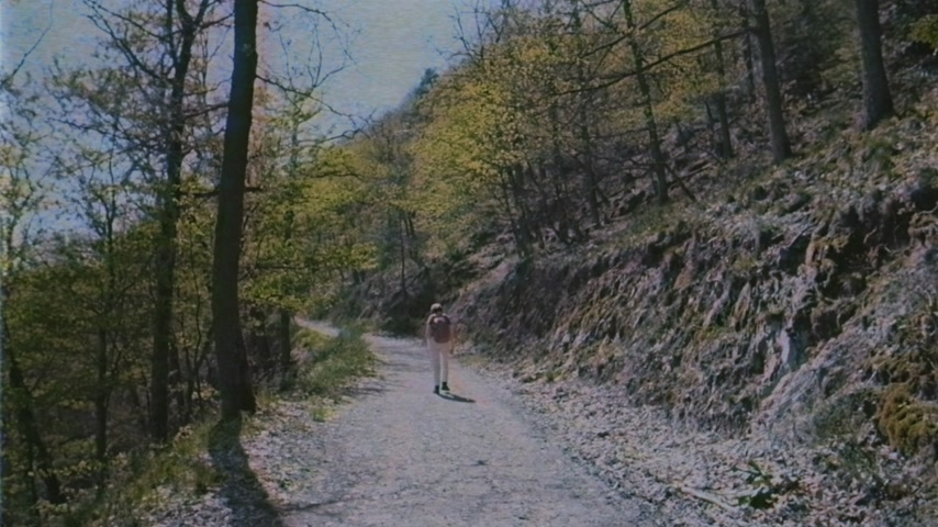 древесный : VHS vintage tape film rear view of single young woman with red backpack walking sightseeing discovering the Vosges forest on a spring day with clear blue sky and tall pines vertical image