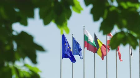 all european flags : Calm peaceful view European Union flag next to other Eu Member states waving in front of Parliament headquarter in Strasbourg a day before 2019 European Parliament election view through trees