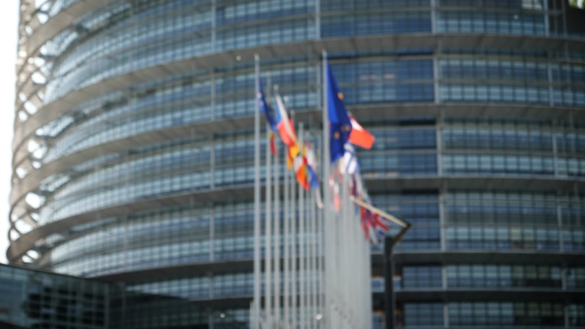 kongres : Defocused view of European Parliament headquarter in Strasbourg with all European union member flags waving days before Parliamentary elections on 26 may and slow flowing poplar tree white fluff Dostupné videozáznamy