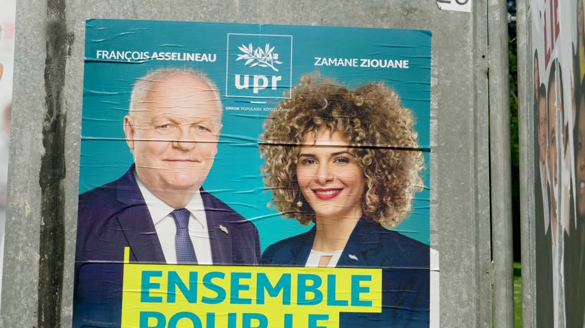 avrupa birliği : Strasbourg, France - May 23, 2019: Tilt-up to posters in green sunny park for 2019 European Parliament election featuring French UPR for Frexit francois Asselineau Zamane Ziouane