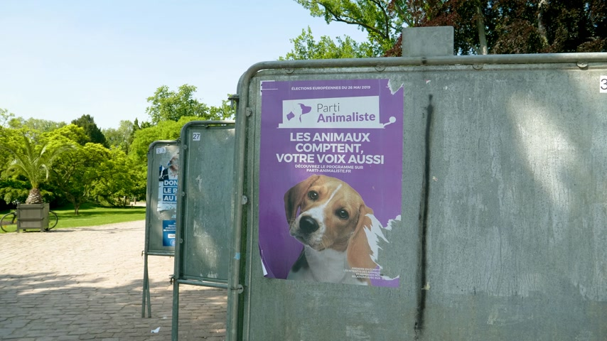 migrants : Strasbourg, France - May 23, 2019: Poster with dog face in green sunny park for 2019 European Parliament election featuring French Parti Animaliste