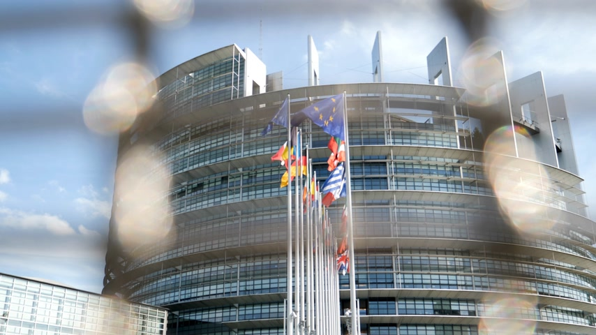 all european flags : View through security fence of European Parliament headquarter in Strasbourg with all European Union Flags waving in the wind in the Sunday of 2019 European Parliament election slow motion