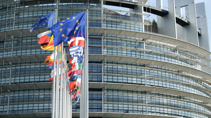 all european flags : European Parliament headquarter in Strasbourg with all European Union Flags waving in calm wind in the Sunday of 2019 European Parliament election - sunny clear day slow motion 4k UHD Stock Footage