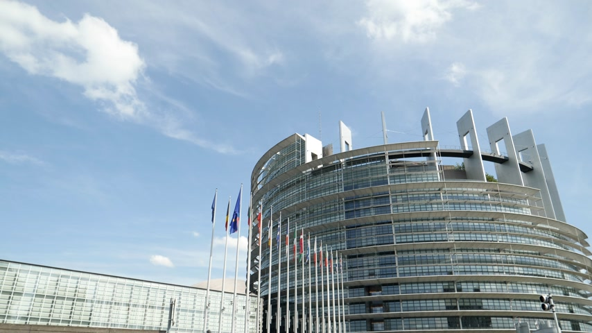 all european flags : European Parliament headquarter in Strasbourg with all European Union Flags waving in calm wind in the Sunday of 2019 European Parliament election - sunny clear day slow motion 4K UHD footage