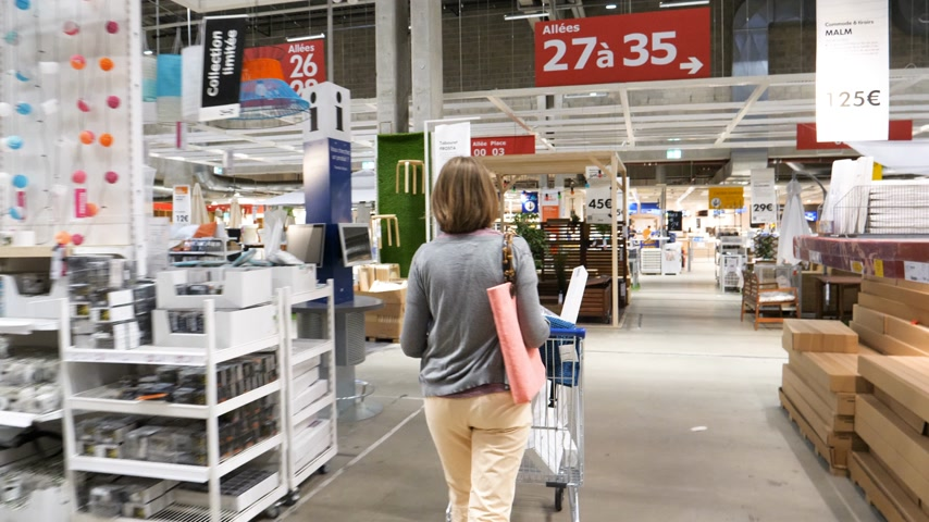 interior : Paris, France - Circa 2019: Rear view of single elegant French woman pushing supermarket cart trolley multiple goods inside IKEA warehouse furniture store shopping for households goods and decorations