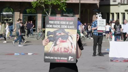 elesett : Strasbourg, France - Circa 2019: Female vegan protester from the animal rights organization demonstrate holds vigil for the welfare of cows