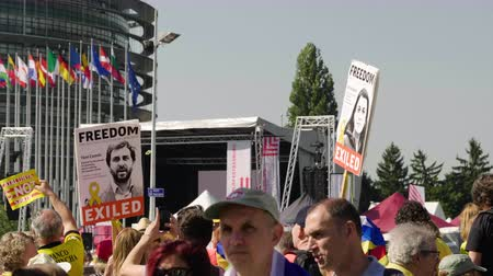 katalán : Strasbourg, France - Jul 2 2019: Man holding placard Freedom for Toni Comin at protest front of EU European Parliament against exclusion of three Catalan elected MEPs Stock mozgókép