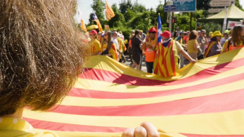 protestor : Strasbourg, France - Jul 2 2019: POV People holding immense Estelada Catalan separatist flags demonstration protest front of EU European Parliament against exclusion of three Catalan elected MEPs