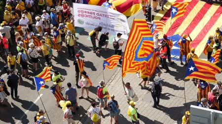 protestor : Strasbourg, France - Jul 2 2019: Aerial view of people holding Estelada Catalan separatist flags demonstrate protest front of EU European Parliament against exclusion of three Catalan elected MEPs Stock Footage