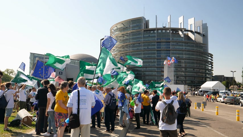 european parliament election : Strasbourg, France - Jul 2 2019: Large Group of people with waving Flags of the European Movement Federalist flag protesting in front of European Parliament