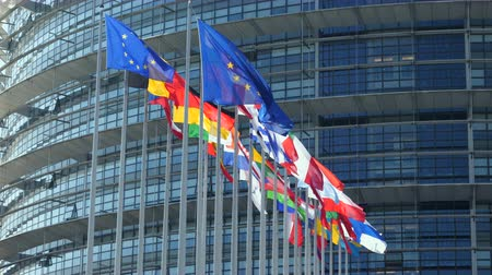 all european flags : European Union Flags waving calmly in front of European Parliament building in Strasbourg France includes United Kingdom flags Stock Footage