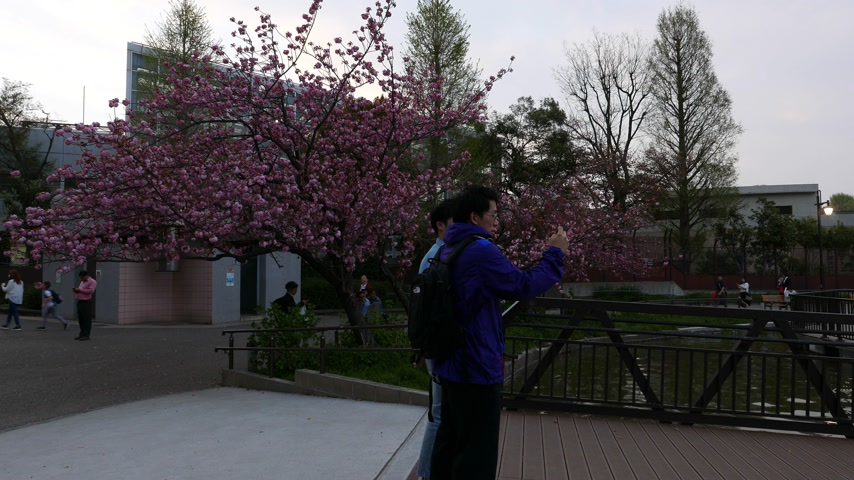 make friends : Twon japanese men make pictures at Ueno park, Japan Stock Footage