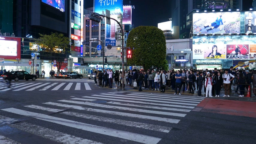Cars drive on road at Shibuya, people wait at pedestrian crossing, Tokyo