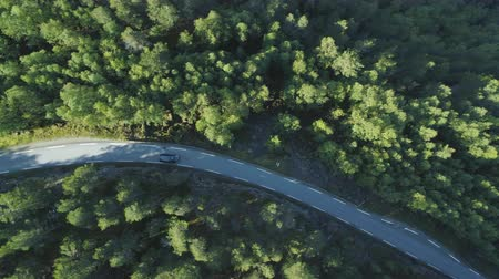 üst : White Car is Going on Country Road in Green Forest in Norway in Summer Day. Aerial Vertical Top-Down View. Drone is Flying Sideways Stok Video