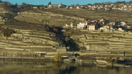 geneva : Terraced Vineyards and Village on Lake Geneva Shore on Sunny Day. Lavaux, Switzerland. Aerial View. Drone is Orbiting Stock Footage