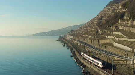 follow shot : Passenger Train Goes Along Lake Geneva Shore. Terraced Vineyards of Lavaux. Switzerland. Aerial View. Medium Shot. Drone Follows Train