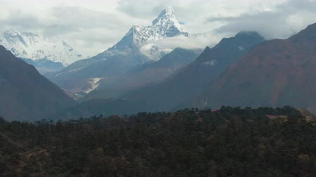 Ama Dablam Mountain and Coniferous Forest. Himalaya, Nepal. Aerial View. Drone Flies Sideways, Tilt Up