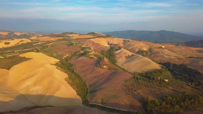 лоза : Aerial nature landscape beautiful hills forests fields and vineyards of Tuscany, Italy Стоковые видеозаписи