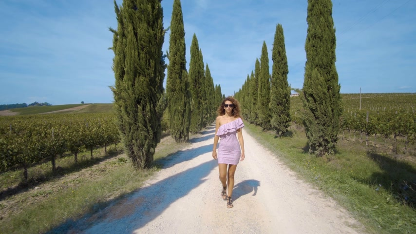 sandals : Back view a woman in a dress goes away into the distance along the cypress alley, of decorative and neat tall green trees in the park. On a Sunny summer day. 4k Stock Footage