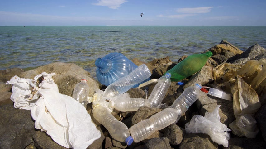 dirty beach : Dirty plastic bottles on the stone beach. Environmental pollution.