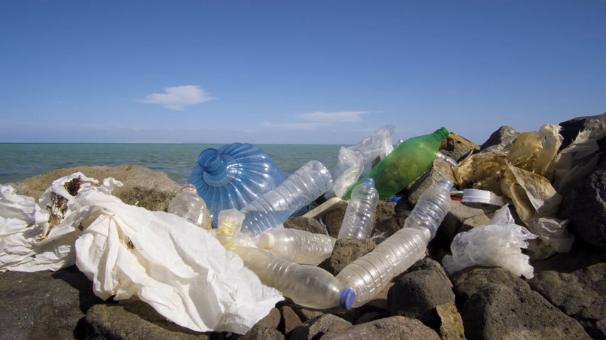 veneno : Dirty plastic bottles on the stone beach. Environmental pollution.