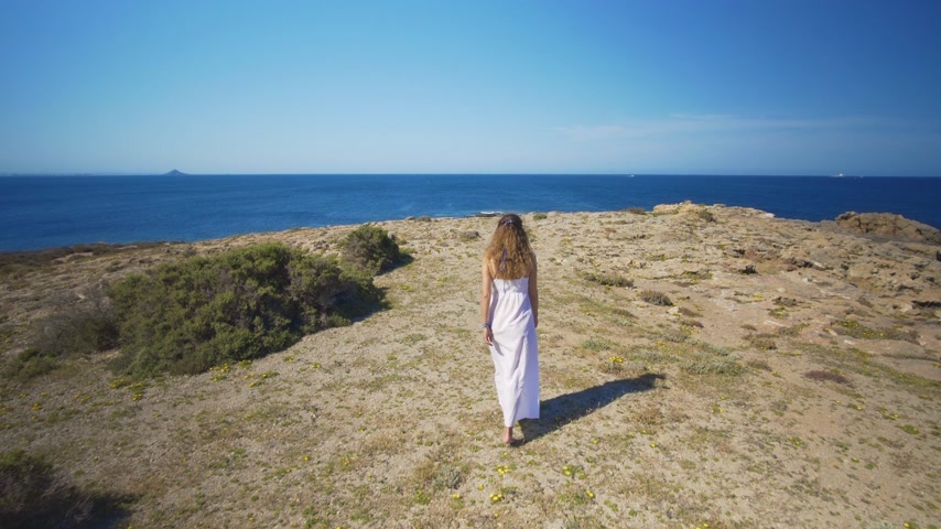 executar : Aerial view. A girl in a white dress goes to the edge of the sea.