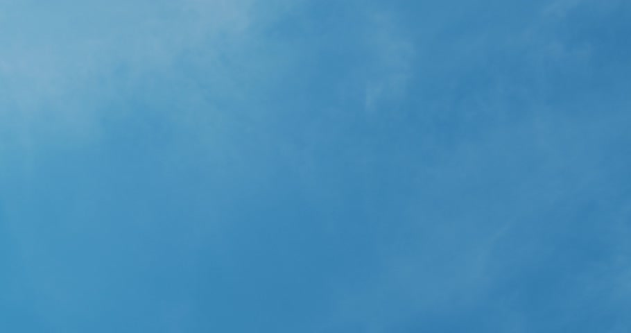 glide : White Seagulls flying above a head