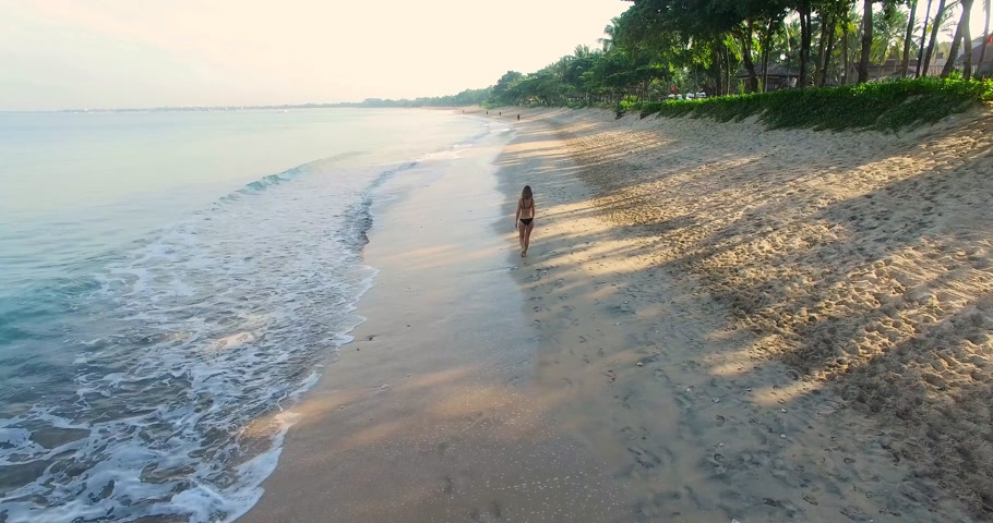 Girl walk beach aerial view. Woman calling a walk with her Stock Footage