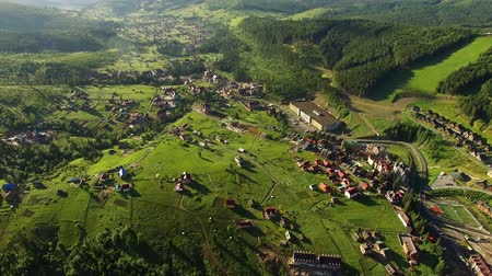 Aerial Drone view over mountain village with forests. Flight above fields