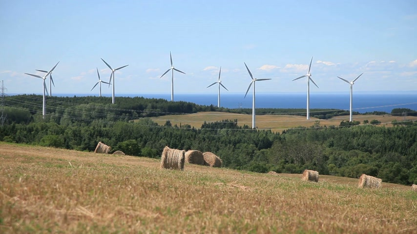 turbine : Wind Turbine and field