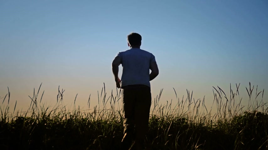 in : Man Disappearing in Blowing Grass Silhouette. Stock Footage