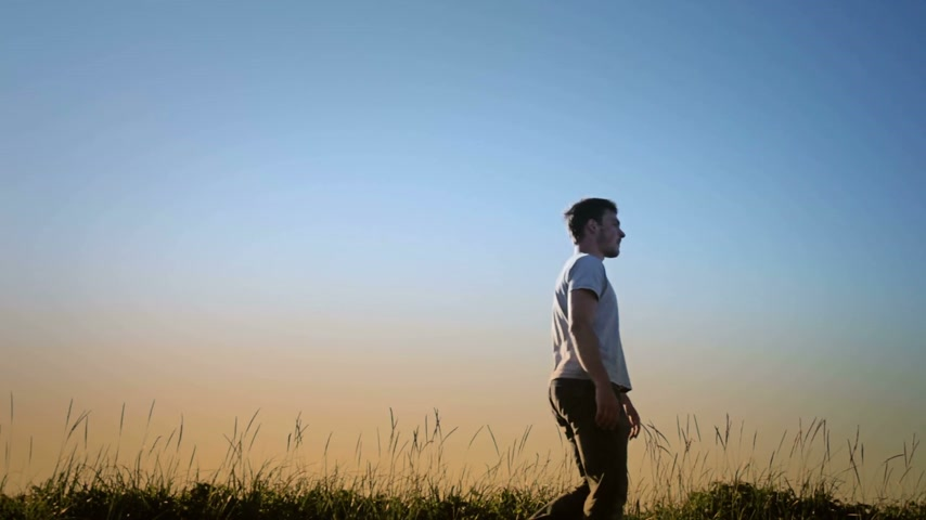 скрестив : Man Walking in Blowing Grass Silhouette. Стоковые видеозаписи