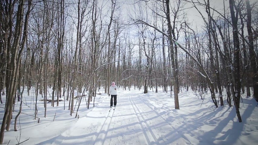 narciarz : Woman Cross-Country Skiing Alone