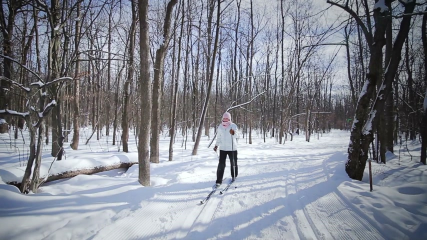 лыжник : Woman Cross-Country Skiing Alone