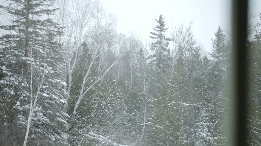 ladin : Snowstorm View from indoor through the Window Stok Video