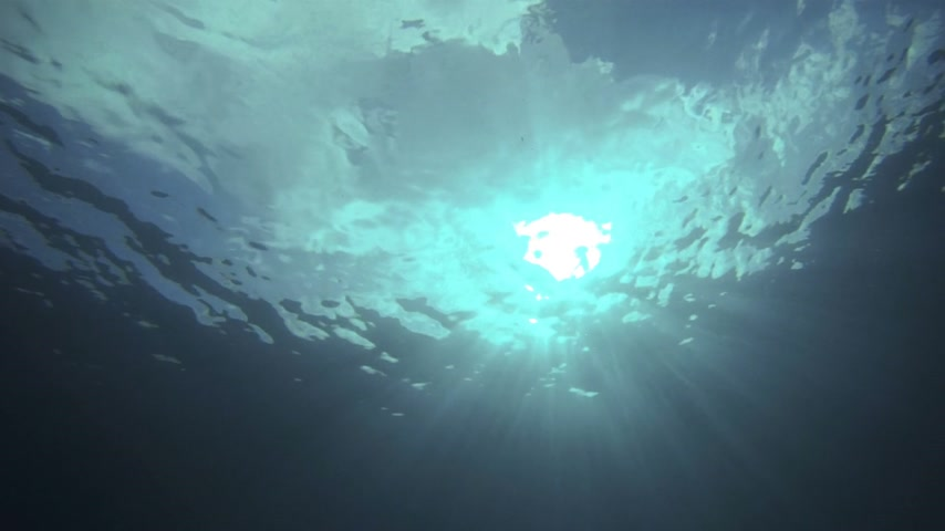 oceano : Underwater Video of the Sky from a Deep angle in the Ocan