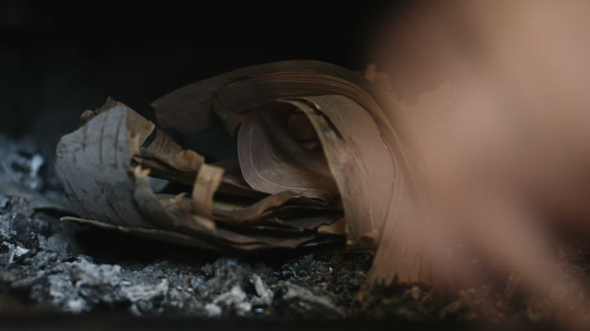 кедр : How to quickly start a Fire in a Fireplace using Birch Bark, Dry Cedar and Wood Logs