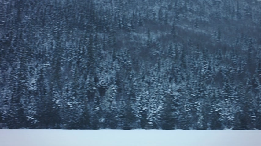 kanada : Panning Footage of Frozen Nature, Lake and Forest during Cold Winter