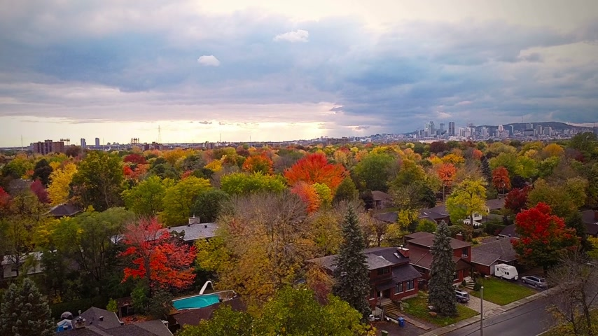 kanada : Top Suburban View of Montreal and beautiful Trees during a Cloudy Autumn day