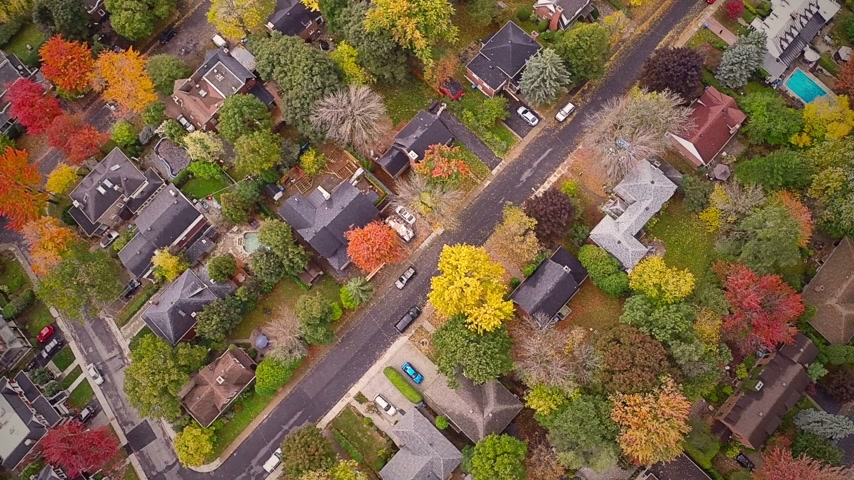 manzaraları : Top Suburban View of Montreal and beautiful Trees during a Cloudy Autumn day