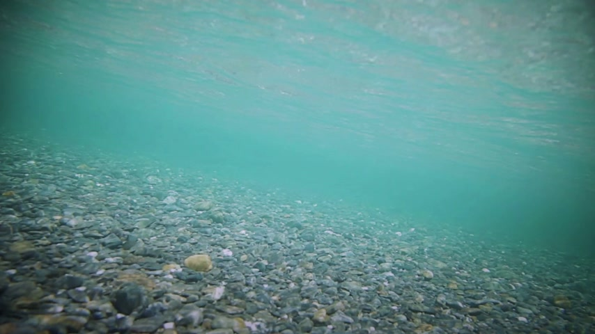 inferior : Underwater footage of A super Clear River Bottom
