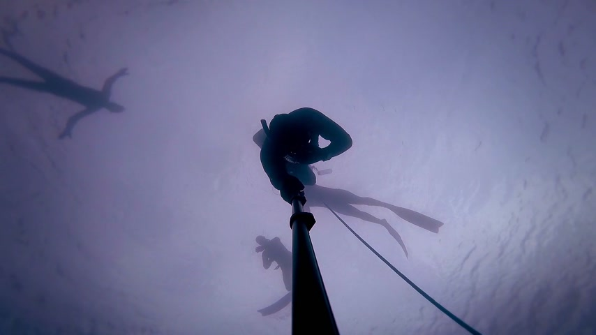 participante : Freediver going at 20m or 60 feet and experiencing a Freefall.