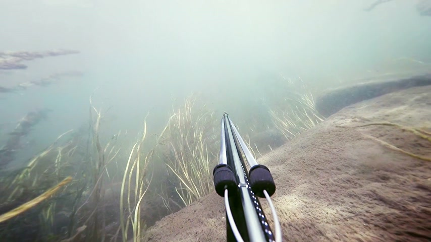 ploutve : Freediver Spear Fishing and Going Through Hardcore Algae and See Grass
