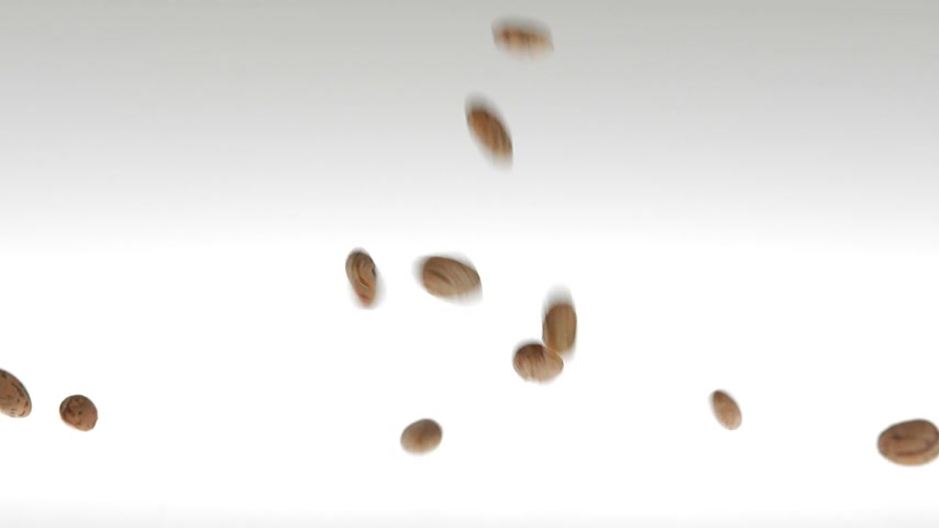 bitkisel : 180fps Super Slow Motion Lentils Falling on White Surface Stok Video